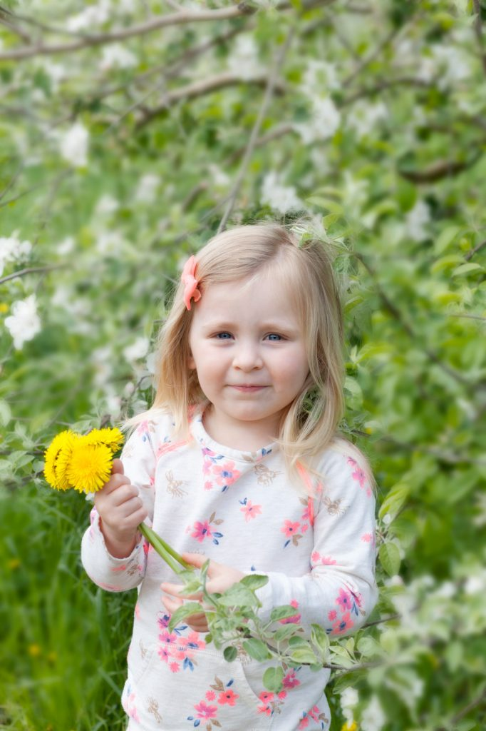 Spring Mini Session - Little girl holding yellow flower - www.daniellebustamante.com - #springminisessions #nhminisession